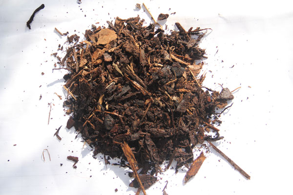 Pine Bark Mulch sample