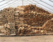 Seasoned firewood drying in a greenhouse