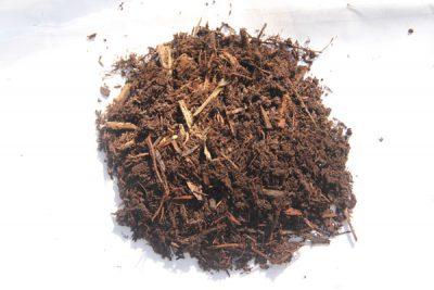 Hemlock Mulch sample