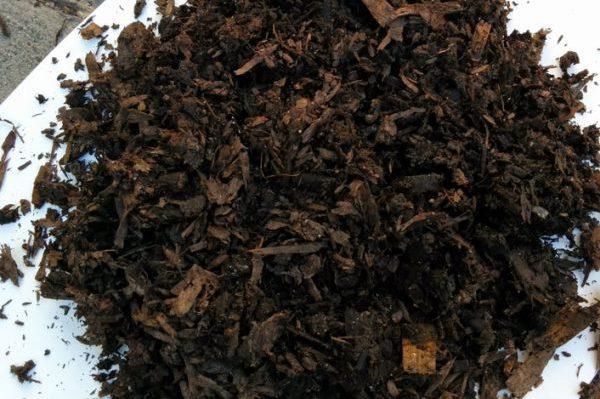 Nutri-Peat Mulch