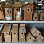 Bird Houses for Small Song Birds